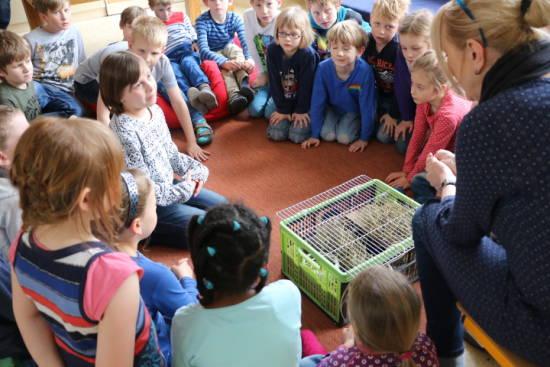 Evangelische Grundschule Sömmerda